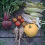 A variety of produce