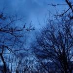 Nuits d'Hiver et Guérison de l'Ame