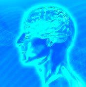 The Conscious Individual
